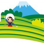 ほどよい都会?それとも便利な地方?とにかく暮らしやすい静岡県