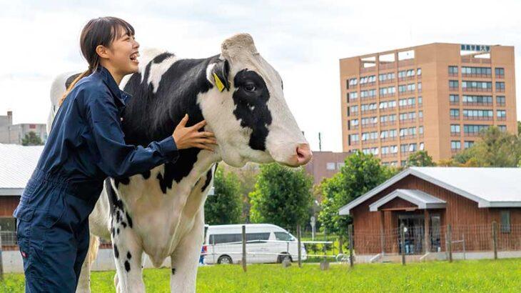本場・北海道での現場体験があなたを変えるー酪農学園大学
